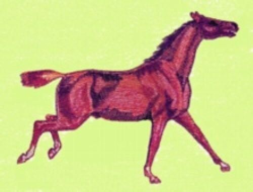 Embroidered Sweatshirt - Quarter Horse BT1546 Sizes S - XXL