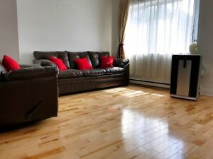 Beautiful fully-furnished three-bedroom apartment