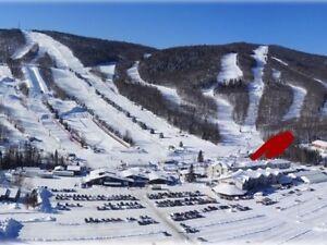 Condo Ski-in/ ski-out