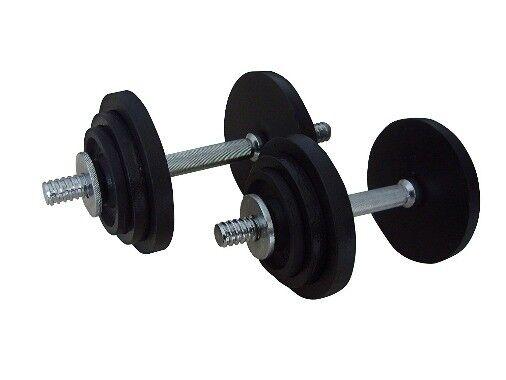 Gold's Gym Cast Iron 20 kg Dumbbell set