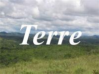 Recherche très grande terre pour chasse à l Orignal et peche
