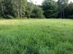 Terrain 13 acres, Chemin Leadville, Estrie (Potton/Mansonville)