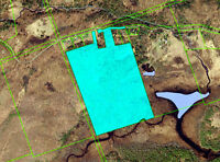 Large piece of land priced to sell