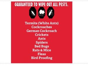 RATS MICE PEST TREATMENT- ALL OVER SYDNEY. From $100 Willmot Blacktown Area Preview