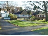 4 BEDROOM *STUDENT* BUNGALOW AVAILABLE