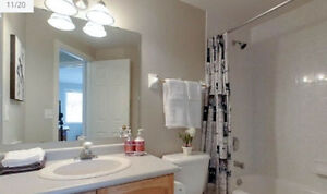 Two Furnished Rooms Available Kitchener / Waterloo Kitchener Area image 7