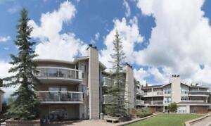 2BD 1.5BTH RENO at Midnapore, 5 min to walk Fish Creek LRT,Park