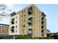 Spacious 2 bedroom flat near Mudchute DLR and River Taxi, secure parking, river views, balcony...