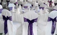 Rentals chair covers, backdrops, ceiling swags, table runners...