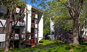 3½ tout inclus, Cégep Ste-foy, Garneau et Université Laval Québec City Québec image 4