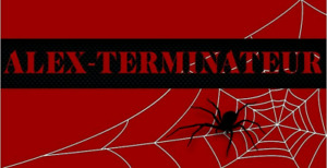 EXTERMINATION MICES RATS BED BUGS COCKAROACHES ANTS SPIDERS