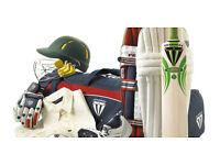 JOB LOT Cricket gear Bats Wheelie Bag Pads Helmet Gloves NEW or USED end of season SALE