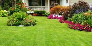 Property Maintenance - Mowing / Fertilizing / Dump Runs & More