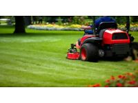 Lawn Mowing Leaf Collection and Garden Maintenance Service - Warwickshire
