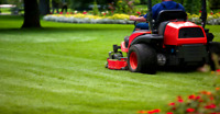 Lawn mowing care services