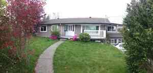 Newly Renovated 3 Bedroom Top Floor House! May1st -15th.