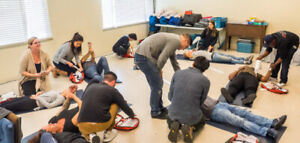Red Cross Emergency First Aid & CPR/AED (OFA Level 1)