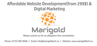 Affordable Website Development(from 299$) and Digital Marketing