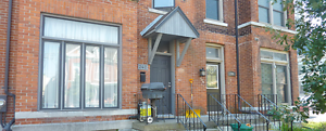 1 Bed, Brock ST, Laundry, Parking, All Inclusive