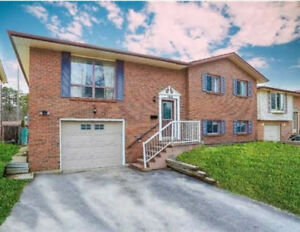 Large three bedroom Main Floor of house in Barrie New Renos!!