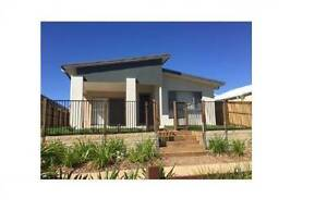 COOMERA- READY TO MOVE IN NOW OR RENT OUT- BRAND NEW Coomera Gold Coast North Preview