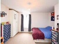 Studio flat in Willesden NW10 self containd PRIVATE LANDLORD