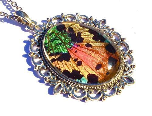 Butterfly Wing Necklace Ebay