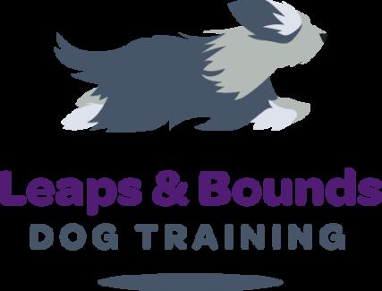 Dog Training & Canine Behaviour Modification Consultant