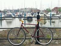 Python Duke single speed fixie bike 54cm