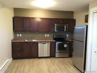 Rosewood 2 Bedroom Basement suite, close to bus route