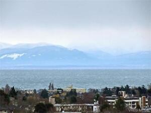 Gorgeous 14 flr 2 bed, 2 bth condo on Yates - great views - pets