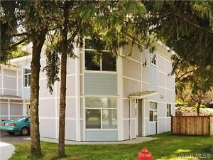 2 Rooms For Rent - Available Move In Date Aug/September