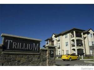 Available Now - Beautiful Condo for Rent – Shared Accommodation