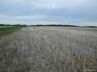 99.48 acres of Agricultural property in the RM of Moosomin #121