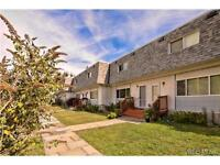 Convenient Central Townhouse With Great Value