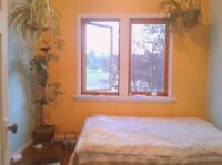 NICE BRIGHT BEDROOM IN SHARED HOME (VERY CLOSE TO VIU)