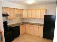 2 bedroom Meadowgreen condo, basement