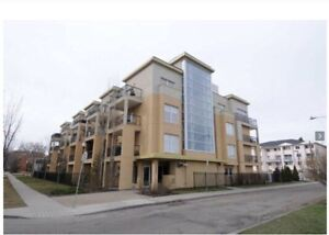 1 bdrm Available sept 1st: luxury condo in Oliver