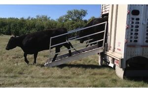 Trailers For Sale Calgary >> Loading Chute | Kijiji: Free Classifieds in Alberta. Find ...
