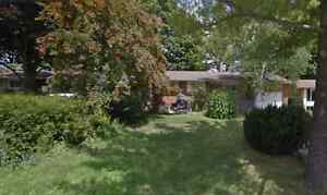 2(basement) bedroom are available in good maintained detach hous Kitchener / Waterloo Kitchener Area image 1