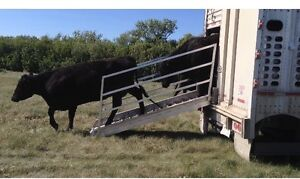 Portable Cattle Liner Loading Chute