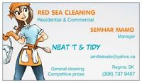 Red Sea Cleaning