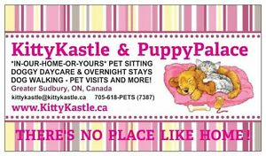 KITTYKASTLE & PUPPYPALACE IN-OUR-HOME-OR-YOURS PRO PET SITTING