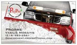 DENEIGEMENT  -PROPRE -  SNOW REMOVAL
