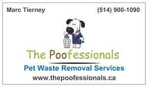 Pet Waste Removal Services