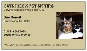 Cat Sitting Services - K-W and Wilmot township