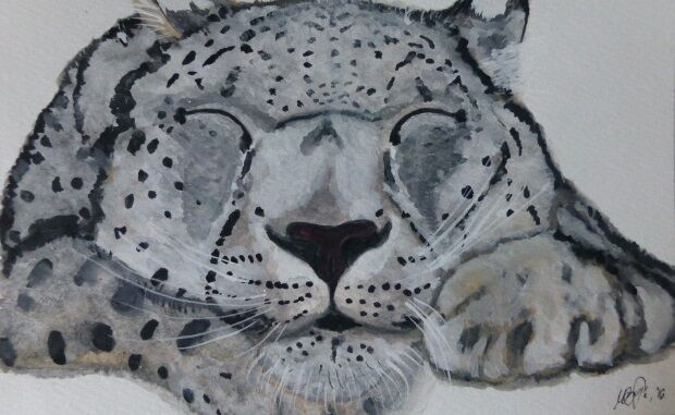 Snow leopard sleeping original watercolor painting