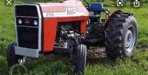 Looking for 255 Massey parts