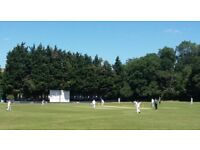 CHILLED OUT EAST LONDON CRICKET CLUB LOOKING FOR PLAYERS OF ALL ABILITIES