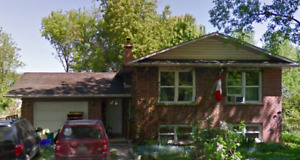 Cookstown House for Rent